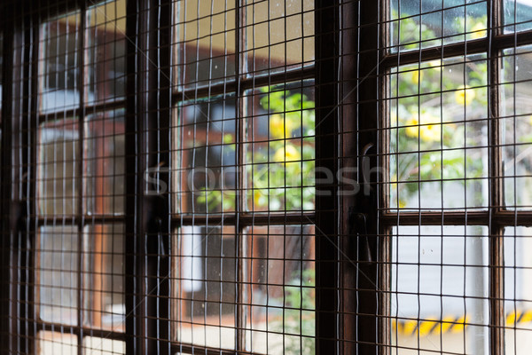 close up of window with metal grate Stock photo © dolgachov