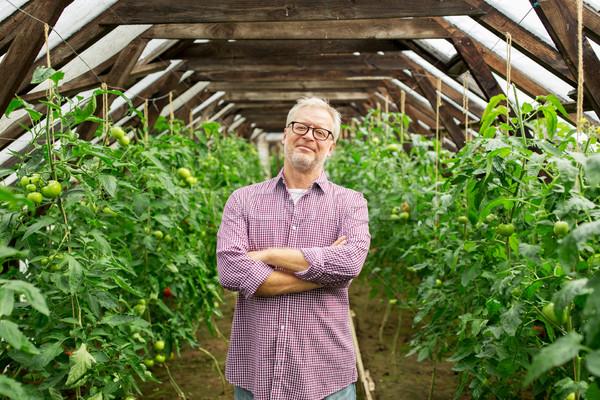 happy senior man at farm greenhouse Stock photo © dolgachov
