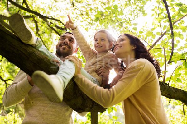 Gelukkig gezin zomer park familie Stockfoto © dolgachov