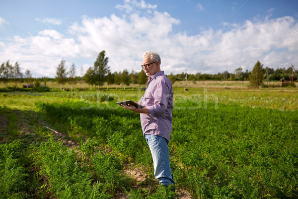 senior man with tablet pc computer at county Stock photo © dolgachov