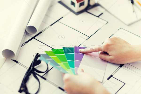 Manos color paleta plan negocios Foto stock © dolgachov