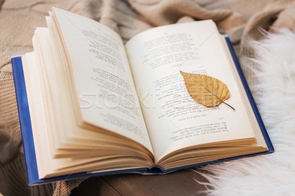 Livro outono folha cobertor casa literatura Foto stock © dolgachov