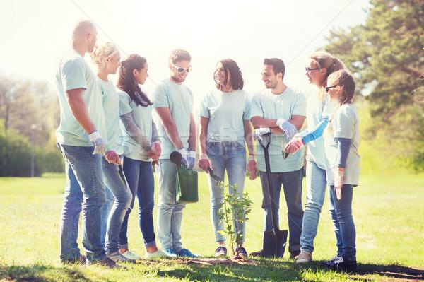 Gruppo volontari albero parco volontariato Foto d'archivio © dolgachov