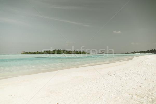 Maldives île plage palmier villa Voyage Photo stock © dolgachov