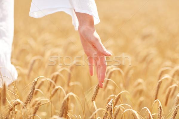 Mujer mano cereales campo país Foto stock © dolgachov