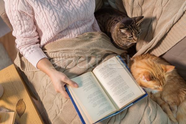 Czerwony właściciel czytania książki domu literatura Zdjęcia stock © dolgachov