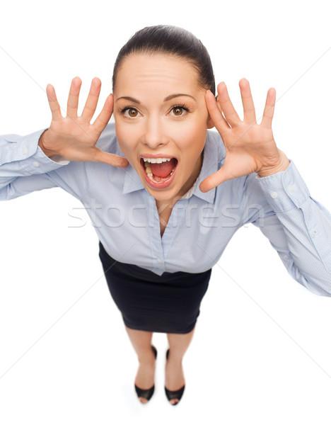 Przestraszony kobieta interesu krzyczeć działalności emocji kobieta Zdjęcia stock © dolgachov