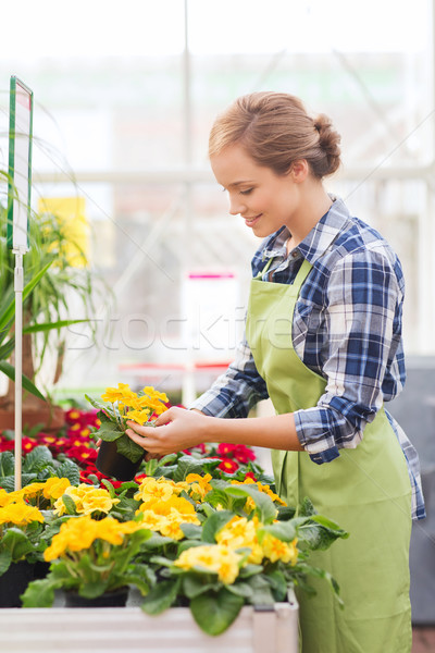 Gelukkig vrouw bloemen broeikas mensen Stockfoto © dolgachov