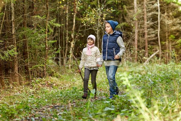 Dos feliz ninos caminando forestales camino Foto stock © dolgachov