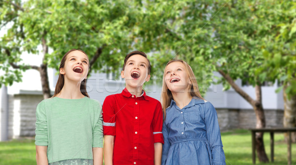 amazed boy and girls looking up over backyard Stock photo © dolgachov