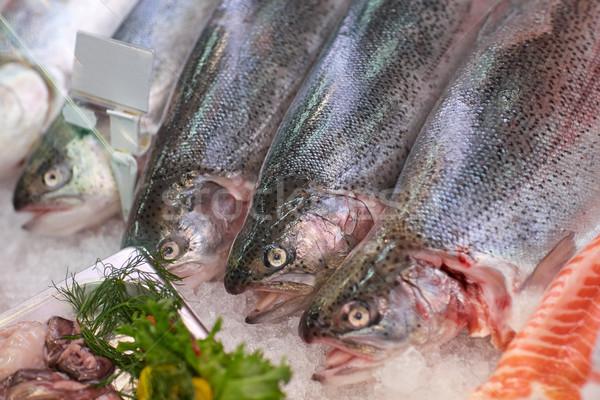 新鮮な 魚 氷 食料品 シーフード 販売 ストックフォト © dolgachov
