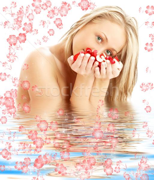 Stok fotoğraf: Sarışın · kırmızı · beyaz · gül · yaprakları · su · çiçekler