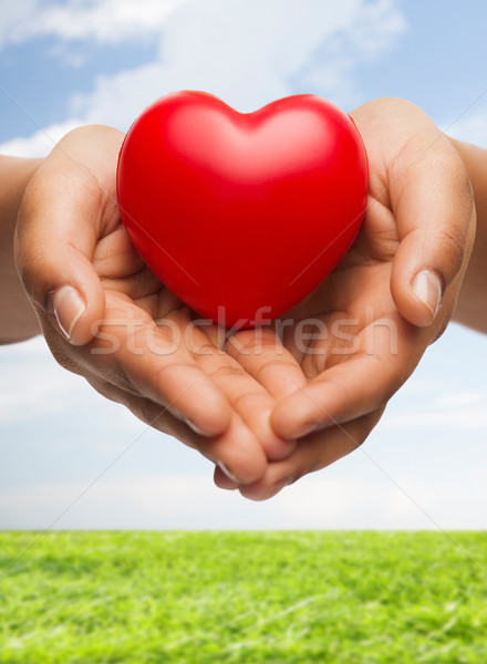Stock photo: womans cupped hands showing red heart