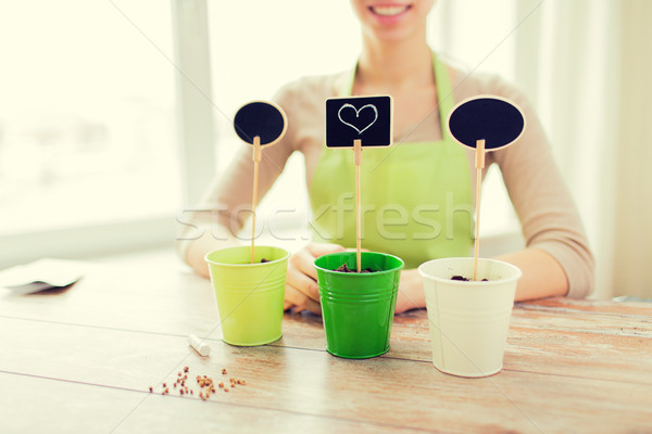 close up of woman over pots with soil and signs Stock photo © dolgachov