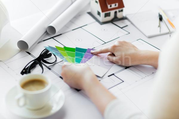 Ręce kolor palety plan działalności Zdjęcia stock © dolgachov