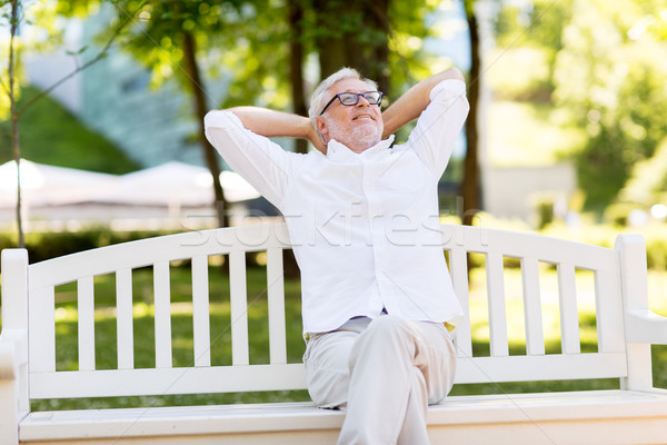 Boldog idős férfi ül pad nyár Stock fotó © dolgachov