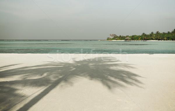 Maldive isola spiaggia palma villa viaggio Foto d'archivio © dolgachov