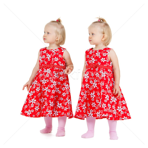 two identical twin girls in red dresses looking Stock photo © dolgachov