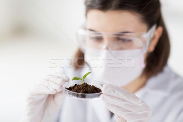 科学 工場 土壌 ラボ 科学 ストックフォト © dolgachov