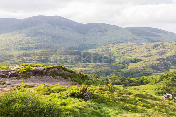 view to Killarney National Park hills in ireland Stock photo © dolgachov