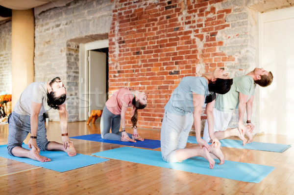 Groupe de gens chameau posent yoga studio fitness Photo stock © dolgachov