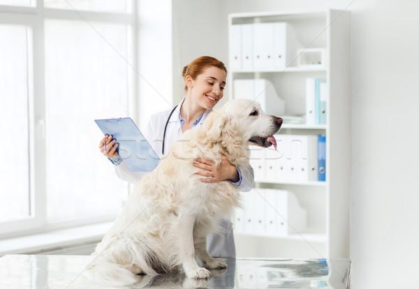 Feliz médico retriever cão veterinário clínica Foto stock © dolgachov