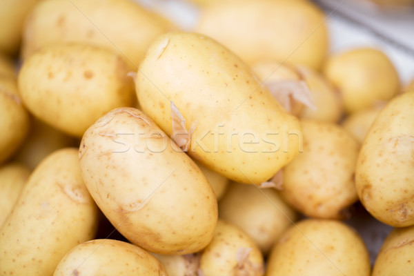 close up of potato at street market Stock photo © dolgachov