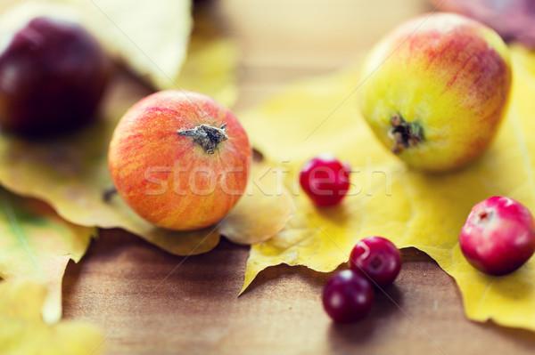 Stockfoto: Vruchten · bessen · natuur · seizoen
