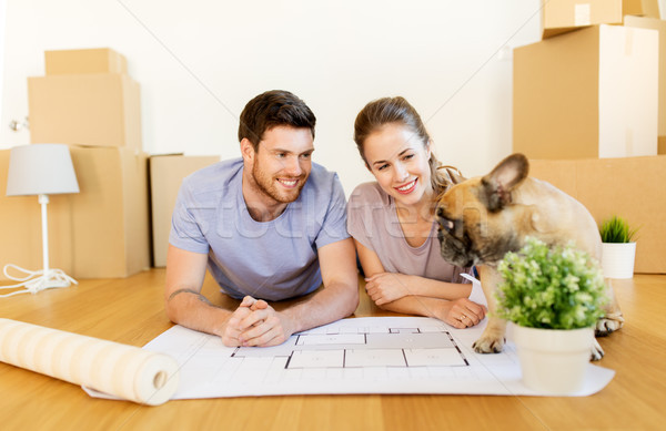 couple with boxes, blueprint and dog at new home Stock photo © dolgachov