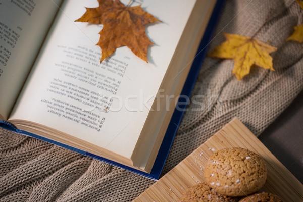 Boek najaar blad cookies home deken Stockfoto © dolgachov