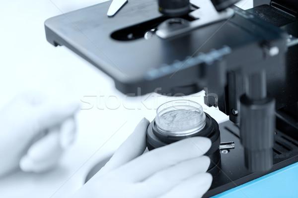 Mão microscópio pó amostra ciência Foto stock © dolgachov