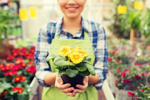 Vrouw bloemen broeikas mensen Stockfoto © dolgachov
