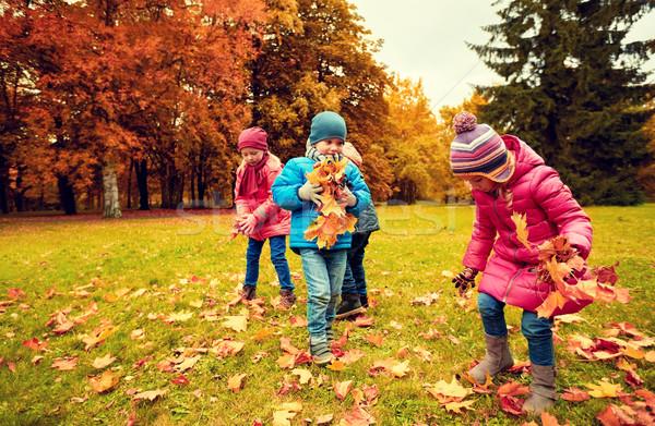 Stock fotó: Csoport · gyerekek · gyűjt · levelek · ősz · park