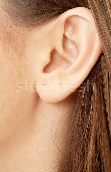 brunette girl ear Stock photo © dolgachov