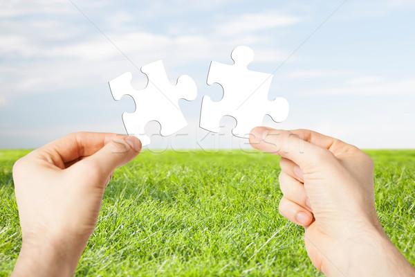 Kettő kezek kapcsolódás kirakó darabok természet ökológia Stock fotó © dolgachov