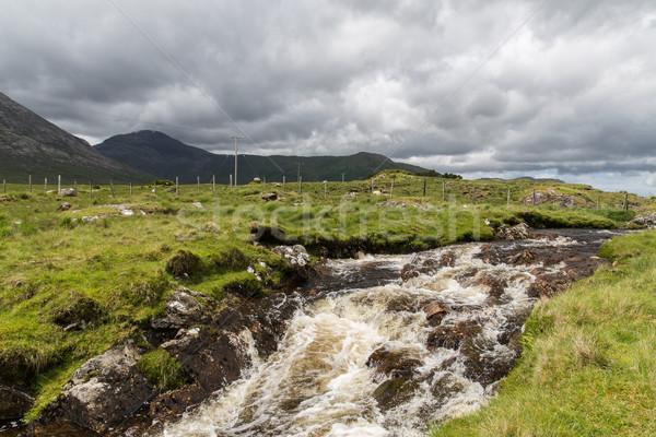Ver rio hills Irlanda natureza paisagem Foto stock © dolgachov