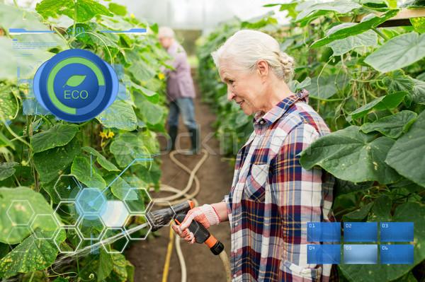 senior couple with garden hose at farm greenhouse Stock photo © dolgachov