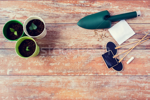 close up of seedlings, trowel and nameplates Stock photo © dolgachov