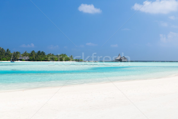 maldives island beach with palm tree and villa Stock photo © dolgachov