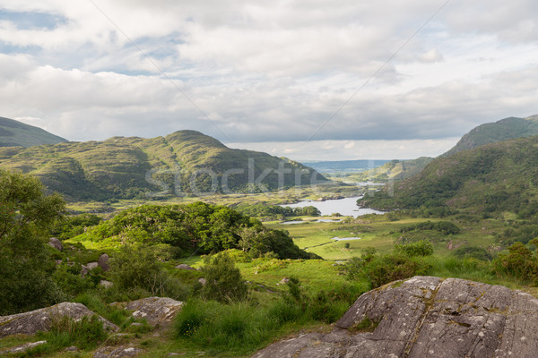 Nehir park vadi İrlanda doğa manzara Stok fotoğraf © dolgachov