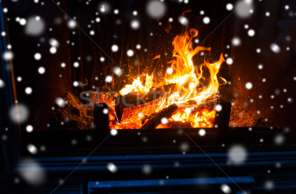 Brandhout brandend haard sneeuw winter Stockfoto © dolgachov