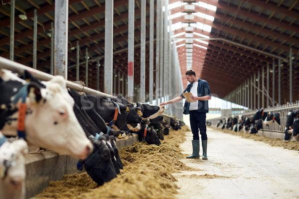 Stockfoto: Landbouwer · koeien · boerderij · landbouw · industrie