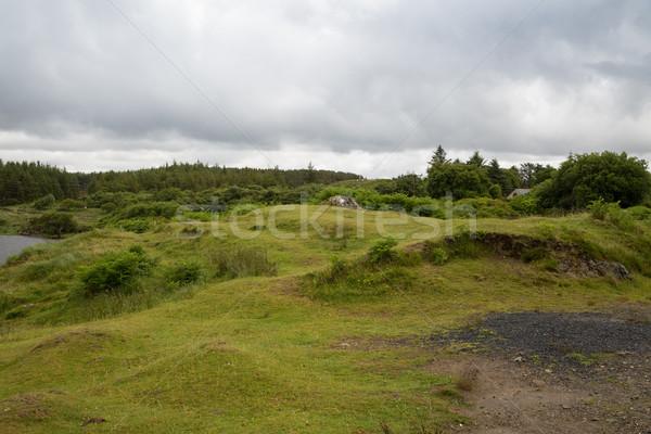 Meer Ierland natuur landschap rivier Stockfoto © dolgachov