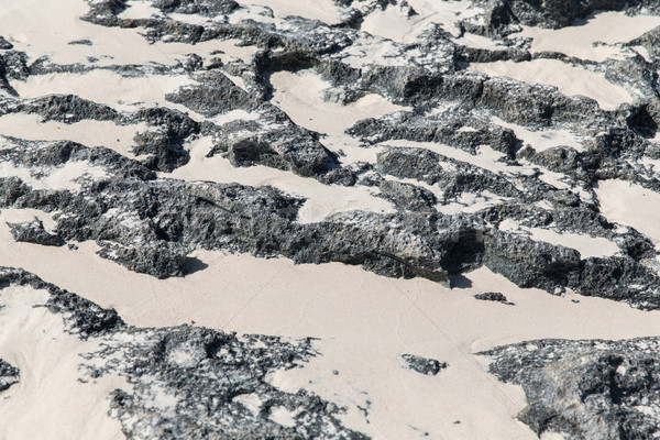 close up of stone or volcanic rock with sand Stock photo © dolgachov