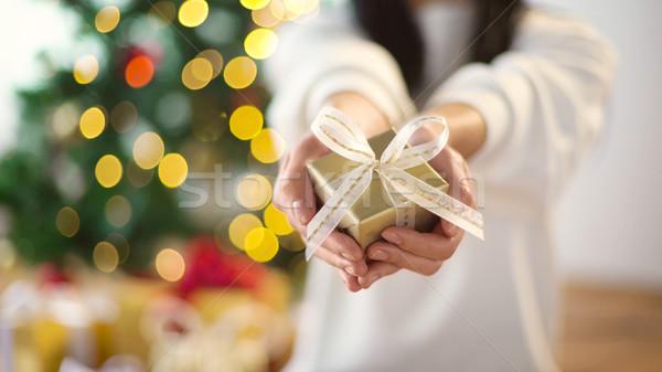 Mulher natal caixa de presente férias Foto stock © dolgachov