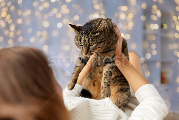 young woman with cat lying in bed at home Stock photo © dolgachov