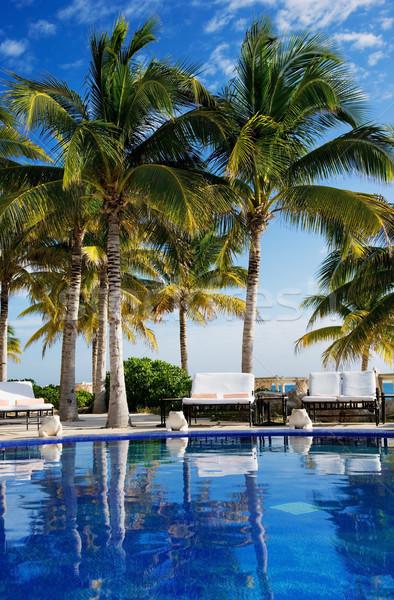 tropical resort Stock photo © dolgachov