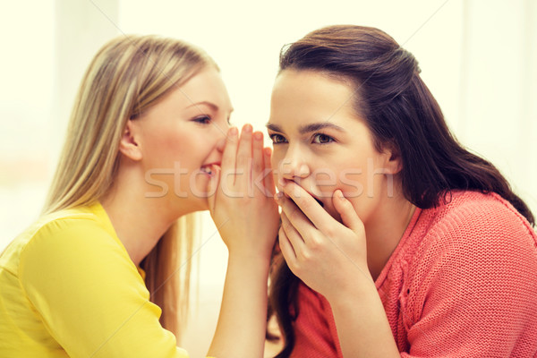 one girl telling another secret Stock photo © dolgachov