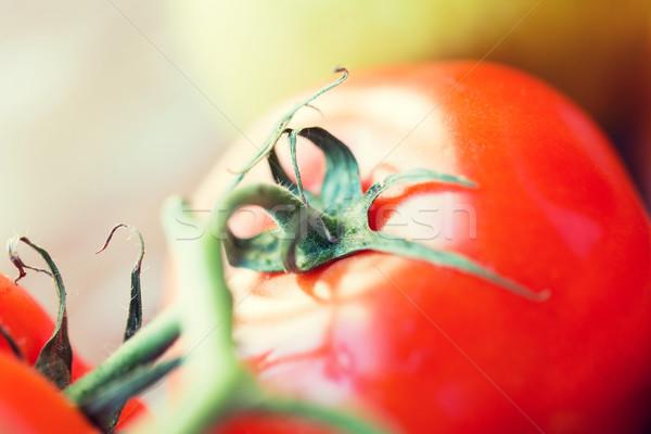 Juteuse rouge tomates régime alimentaire Photo stock © dolgachov