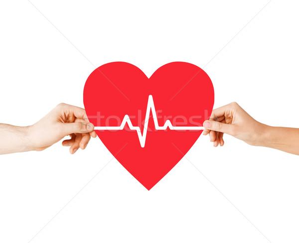Kezek tart szív ekg vonal egészség Stock fotó © dolgachov